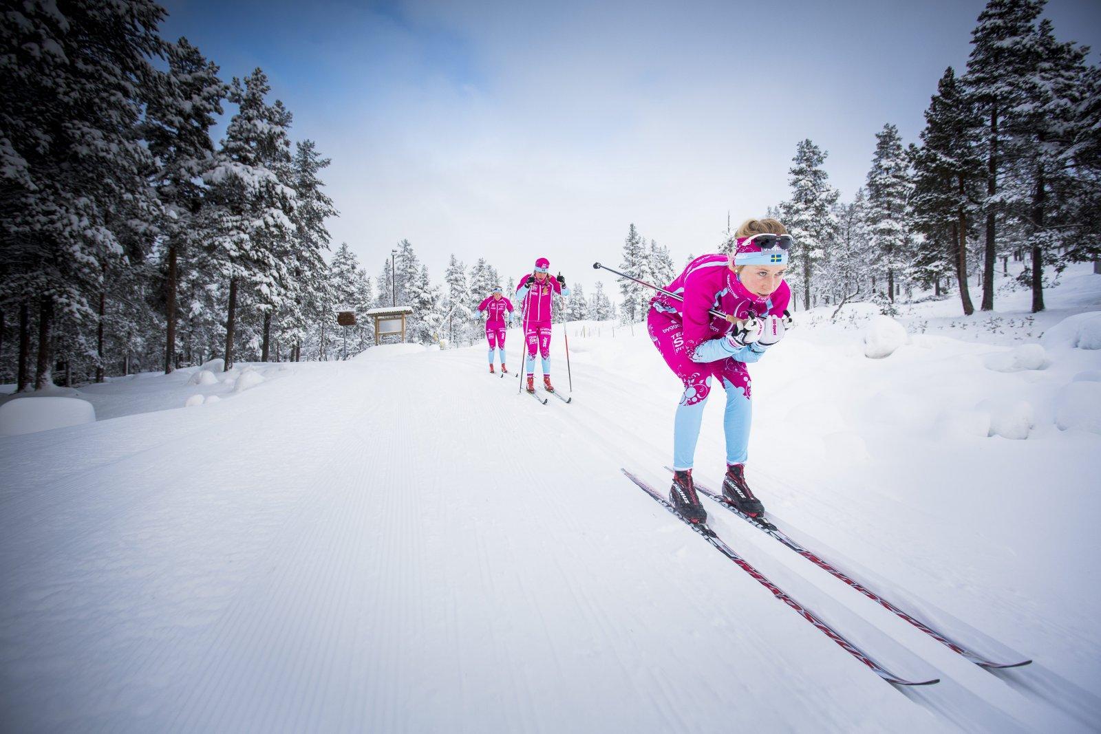 team-ski-_93a3558-kopia-webb