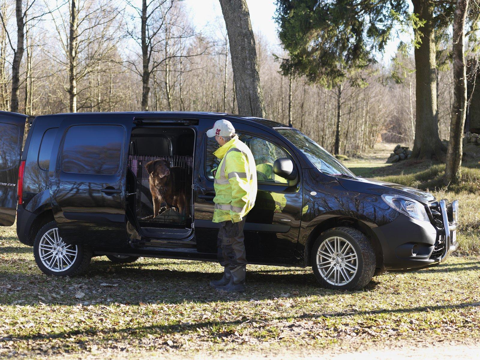 Hundarna åker säkert i Citan, i var sin transportbur som går att fästa och ta loss enkelt i fästöglorna på Citanens golv.